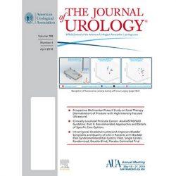Прицельная робот-ассистированная микрохирургическая денервация семенного канатика для лечения хронической орхиалгии или паховой боли: обзор крупной серии случаев изодного центра