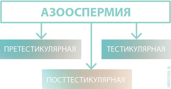 azoospermiya