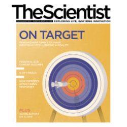 Исследователи разрабатывают новый метод определения половых хромосом в сперматозоидах